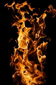 picture of long tongue  - long tongues of flame on a black background - JPG