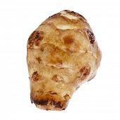 stock photo of jerusalem artichokes  - Single Jerusalem artichoke - JPG