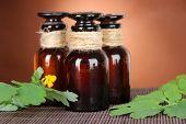 image of celandine  - Blooming Celandine with medicine bottles on table on brown background - JPG