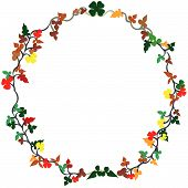 image of tangelo  - Floral vector illustration of a wreath isolated on white background - JPG