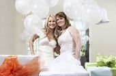 pic of bridal shower  - Portrait of a smiling bride and friend standing together by gift at bridal shower - JPG