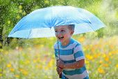 foto of wildflower  - Rain and sunshine with a smiling boy holding an umbrella and running through a meadow of wildflowers - JPG