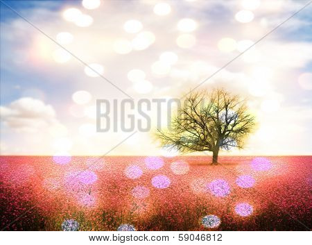 a pretty landscape with a pink field and a tree