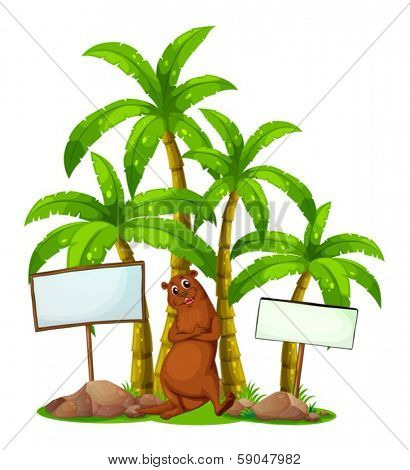 Illustration of a sealion in the middle of the empty wooden boards near the trees on a white background