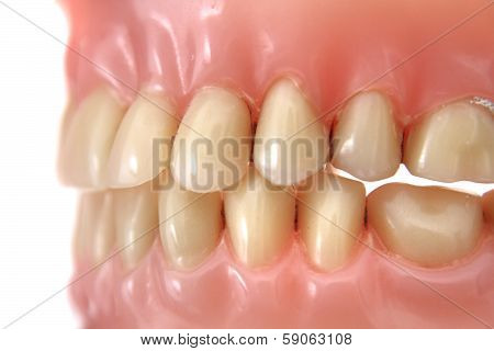 Teeth Prosthesis Background