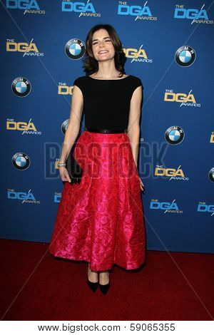 LOS ANGELES - JAN 25:  Betsy Brandt at the 66th Annual Directors Guild of America Awards at Century Plaza Hotel on January 25, 2014 in Century City, CA