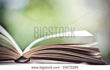 Close up on open book pages