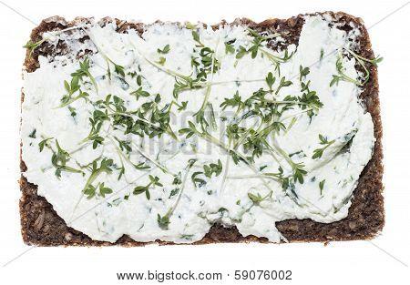 Cream Cheese With Garden Cress (on White)