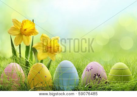 Easter eggs hiding in the grass with daffodil flower