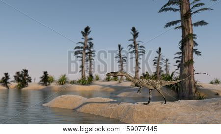 walking coelophysis