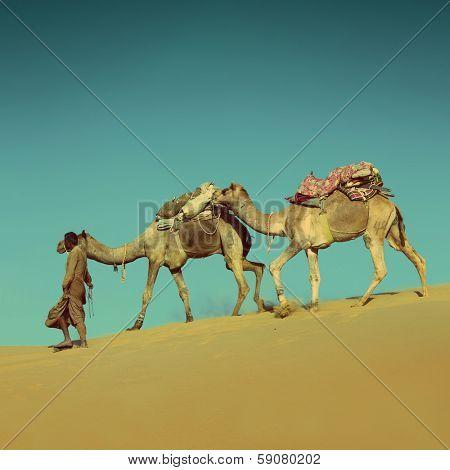 cameleer in desert on sand dune - vintage retro style