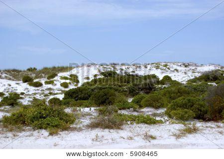 White Sand Dunes Ii