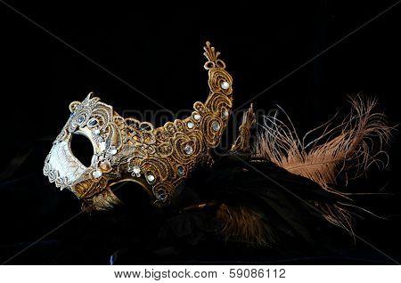 Mardi Gras Carnival Mask
