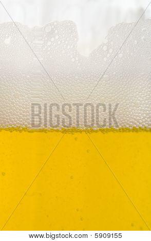 Bier-Blasen