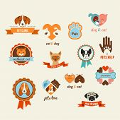 Pets vector icons - cats and dogs elements poster