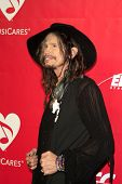 LOS ANGELES - JAN 24:  Steven Tyler at the 2014 MusiCares Person of the Year Gala in honor of Carole