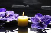 purple orchid and yellow candle, therapy stones