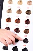 pic of hair dye  - Hair stylist with hair samples of different colors - JPG