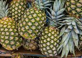 Pineapples (Ananases) at fruit market.