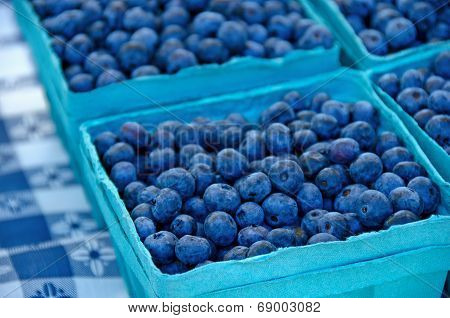 Ripe blueberries in boxes