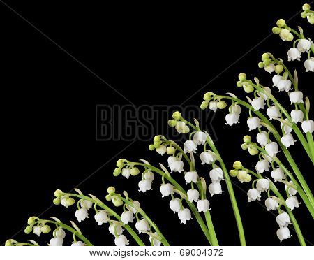 Lily of the valley background design