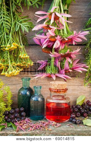 Bunches Of Healing Herbs On Wooden Wall And Glass Bottles