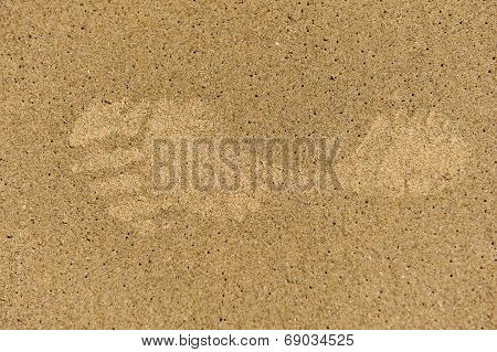 Single Left Footprint In Sand With Bubbles