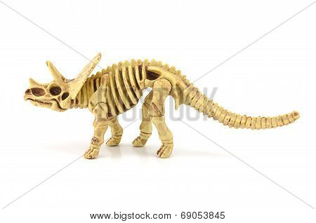 Triceratops Fossil  Skeleton Model Toy.