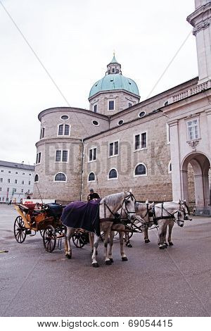 Salzburg Carriage Horses