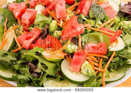 Fresh Salad Closeup