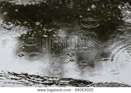 Rain drops rippling in a puddle, selective focus