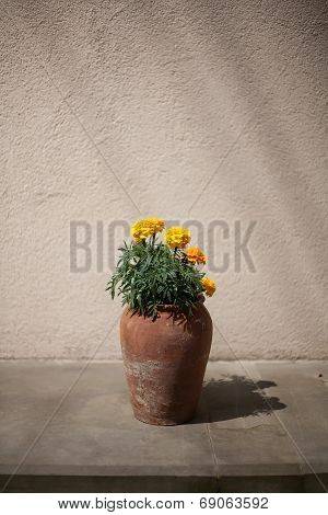 Flowers In A Crock