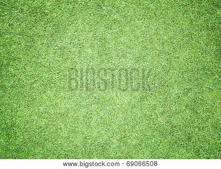 Greensward Football