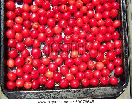Rustic tray of cherries