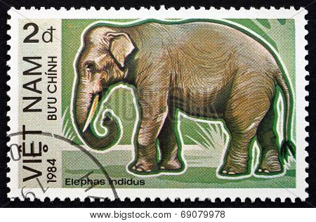 Postage Stamp Vietnam 1984 Indian Elephant