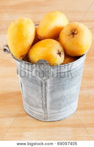 Loquat Fruit In Bucket