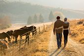 stock photo of country girl  - back view of young couple walking in farm road - JPG