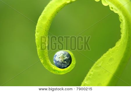 Concept Photo Of Earth On Green Nature ,earth Map By Courtesy Of Visibleearth.nasa.gov