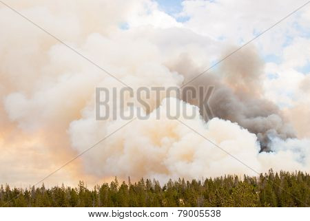 Billowing Fire Clouds In Yellowstone Park