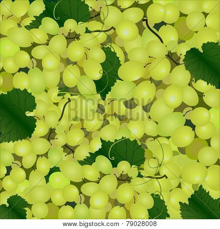 Vector Background Of A Cluster Of Green Grapes