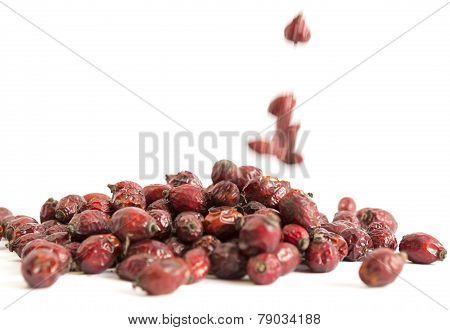Dried Rose Hip Briar