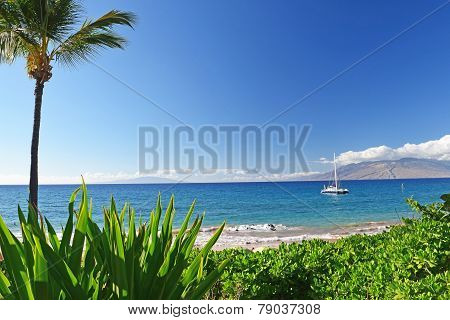 Maui ~ Hawaii