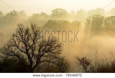 Nature Spiritualize