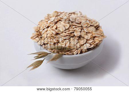 oatmeal oats in a spikelet pialochke