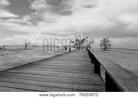 Bridge Over The Sea During Ebb Tide In Black And White
