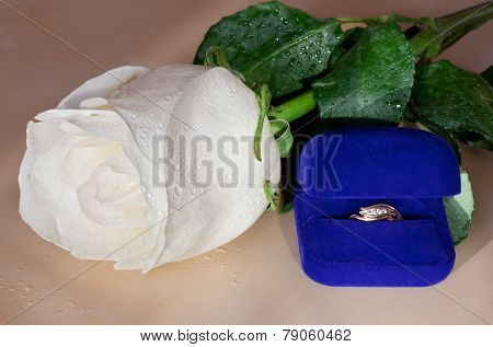 Golden ring and a white rose.