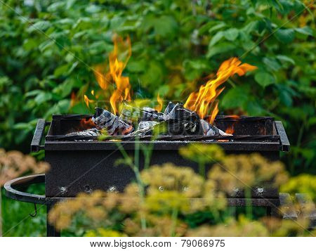 Burning Coals In A Green Garden