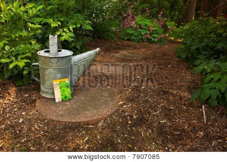 A Worn Watering Can Sits With A Lettuce Seed Packet On A Garden Path
