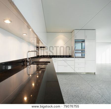 Modern architecture, wide apartment, domestic kitchen view