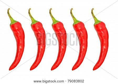 Five Red Hot Chile Pepper.isolated.